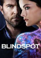 盲点 第三季