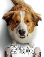 一头狗的使命2